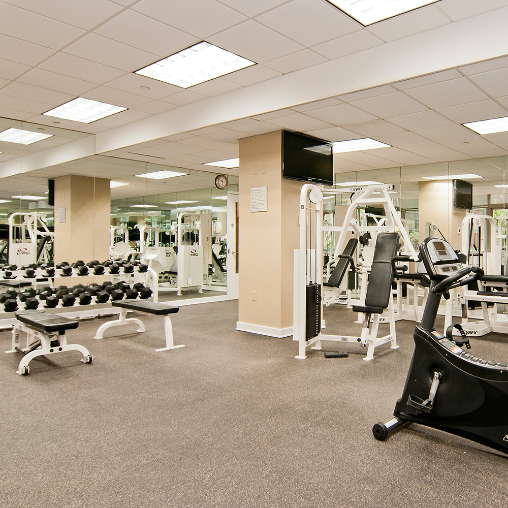 Chelsea centro gym weights 1000x1000