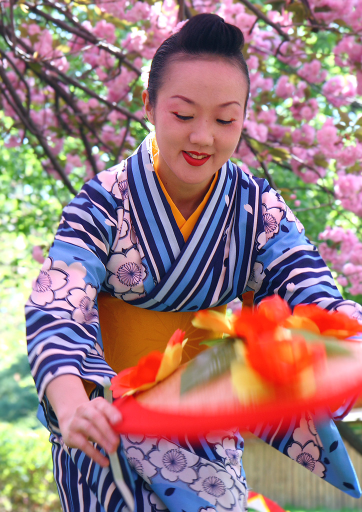 Japanese Traditions And Festivals Japanese Tradition at Sakura