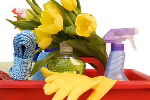 spring cleaning tips apartment cleaning checklists and